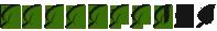 8.5-leafs