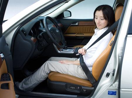 Car-Seatbelts-1